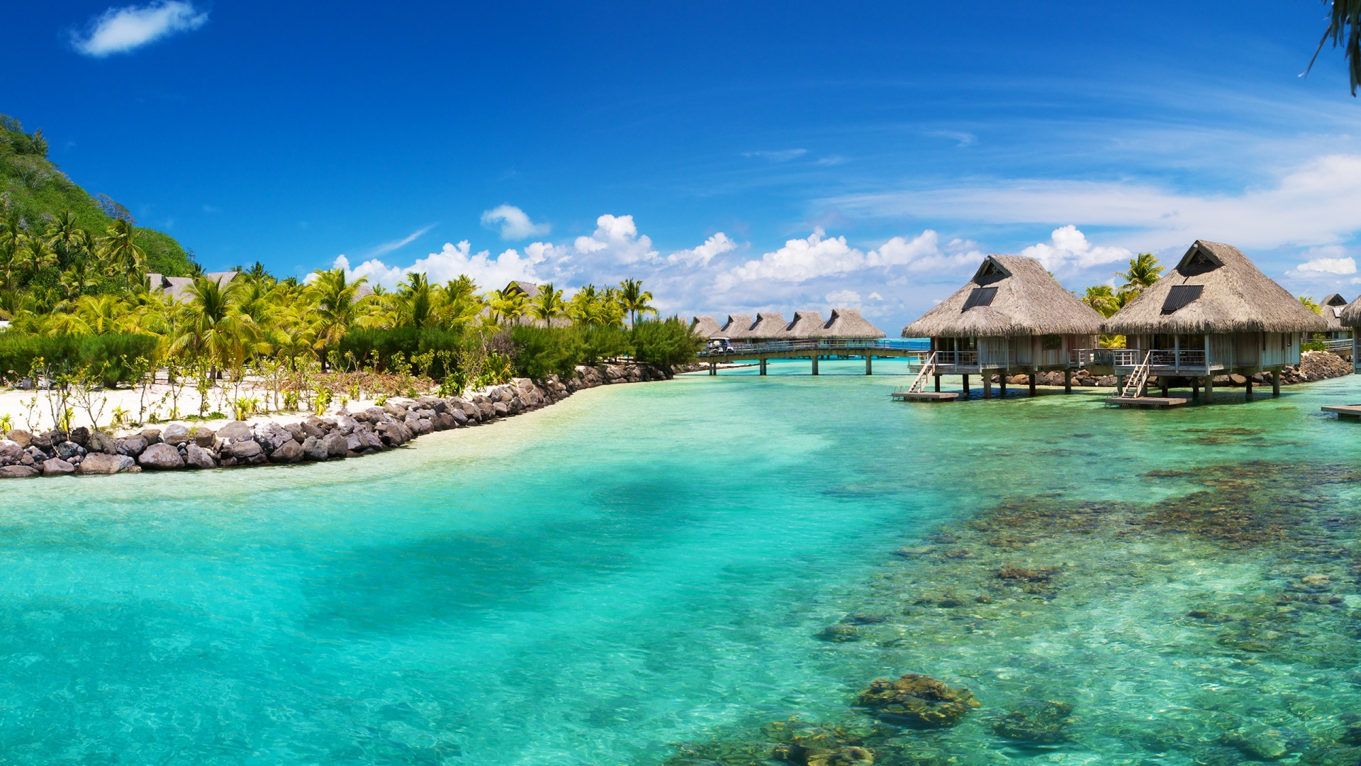 United Airlines Reservation Office in Belize, Belize - Airlines ...