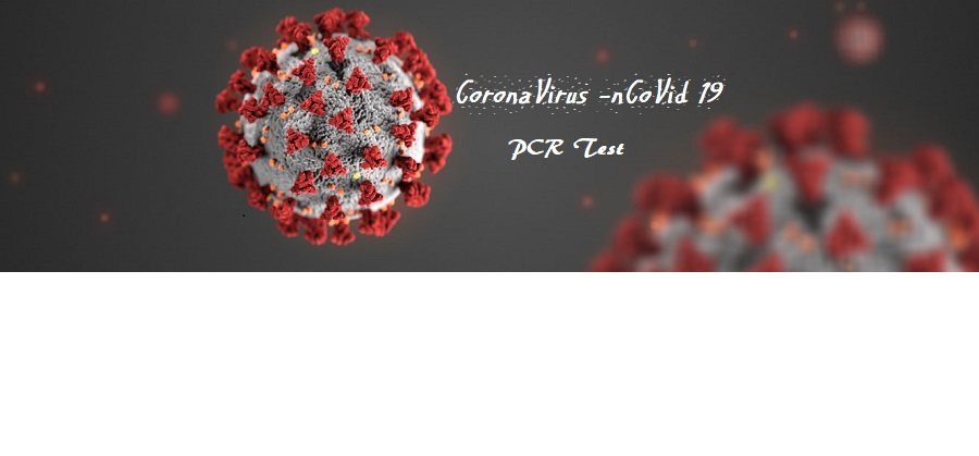What Is Pcr Test Where To Take Pcr Test List Of The Pcr Test Center By Country Airlines Airports